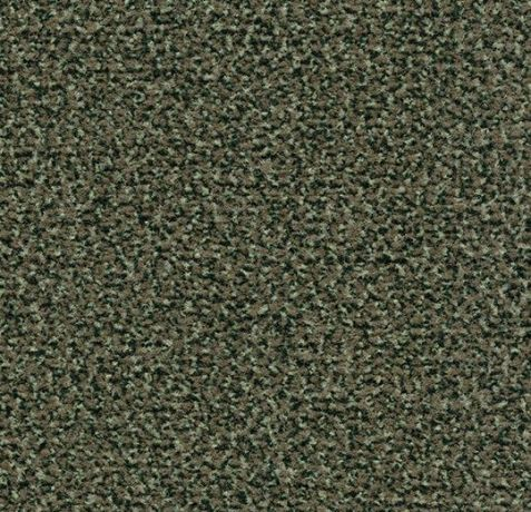 Coral Classic - 4758 olive