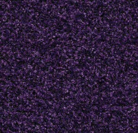 Coral Brush - 5709 royal purple