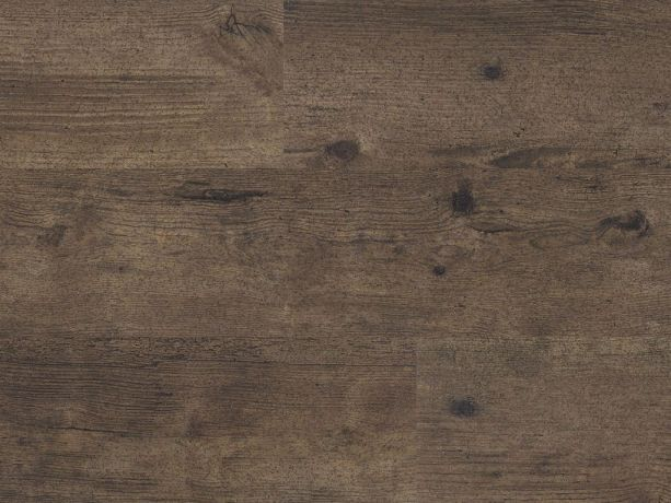 Polyflor Expona Control -  Weathered Country